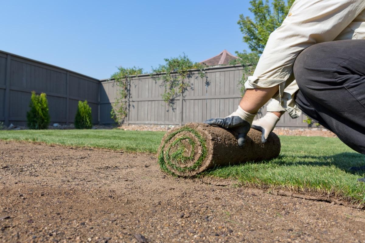 tuin aanleggen grasmatten